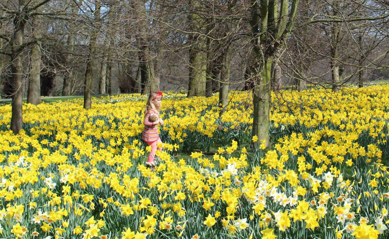 Family Days out in Yorkshire with the Kids – 30+ Ideas!