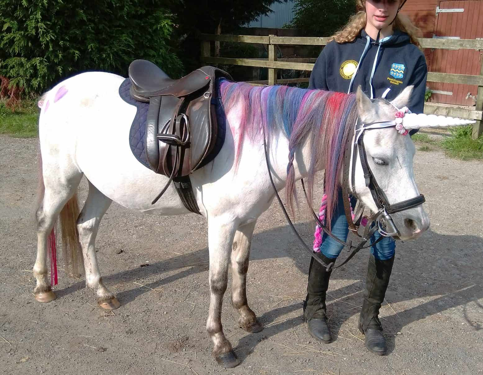 Ride Your Own Unicorn! Pony Parties at Burnby Equestrian, nr York